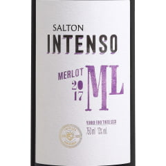 Vinho Salton Intenso Merlot Tinto Seco 750ml
